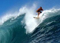 photo de surf 1503