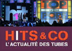 Hit machine, Top of the pops, Hits & Co : un public fidèle