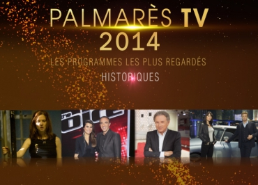 Palmarès TV : Profilage, Mentalist, The Voice et Koh Lanta au top des audiences en 2014